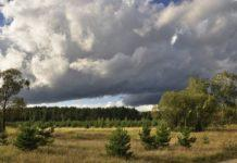 ФБУ «Авиалесоохрана» тушит пожары искусственными осадками